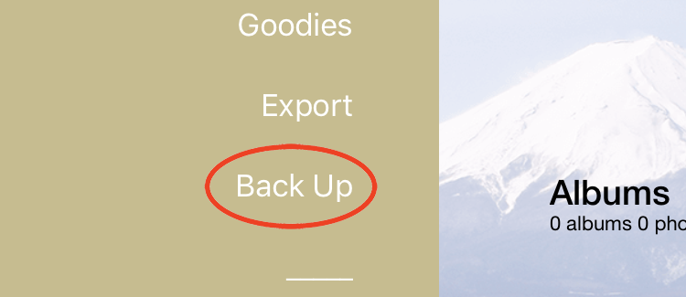 Backup function in Pic Scanner Gold app